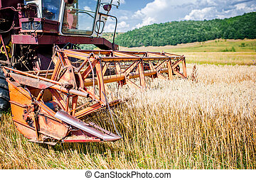 agricultural activities with vintage harvesting machine in wheat