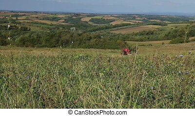 Agricultural activity. - Farmer cutting grass with tractor...