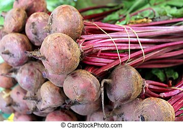 sweet red beet roots