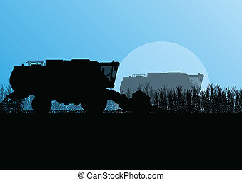 Agricultural combine harvester in grain field seasonal farming landscape scene illustration background vector