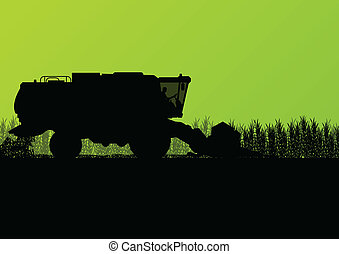 Agricultural combine harvester in grain field seasonal ...