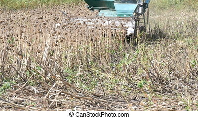Agricultural combine harvester in the field during harvest...