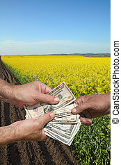Agricultural concept, farmer, money and rapeseed field