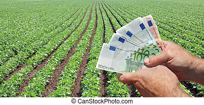 Human hand holding Euro banknote with green cultivated soy field in background