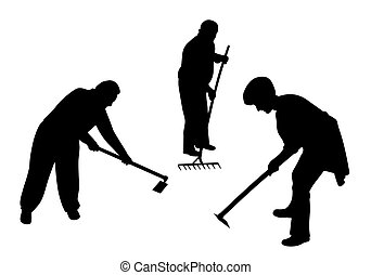 Agricultural farmers working in the field with hoe and rake...