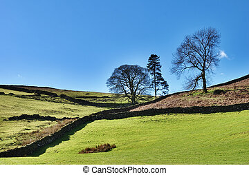 Agricultural Farmland English Lake District - Verdant green...