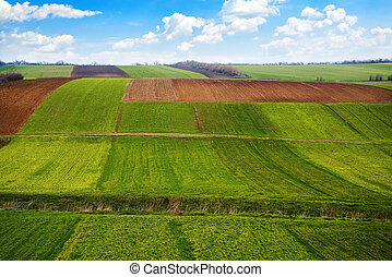 Arable land - Agricultural field. Arable land in the spring,...