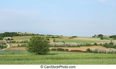 Agricultural fields in hilly landscape