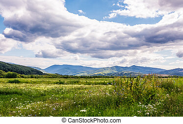 agricultural fields in mountainous countryside. lovely...