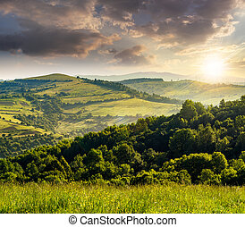 agricultural fields in mountains at sunset