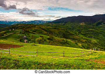 agricultural fields in mountains. beautiful Carpathian...