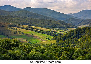 agricultural fields on grassy hills in mountains. beautiful...