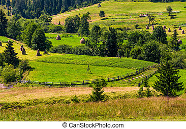 agricultural hills and haystacks. lovely rural scenery in...