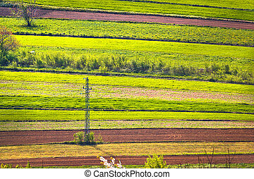 Agricultural horizontal layers green view