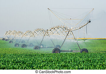 Agricultural irrigation system watering field on summer day.