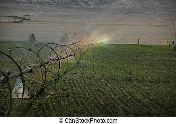 agricultural irrigation system with rainbow