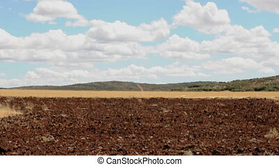 Agricultural land and blue sky