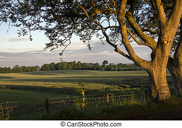 Agricultural Land - County Antrim - Northern Ireland