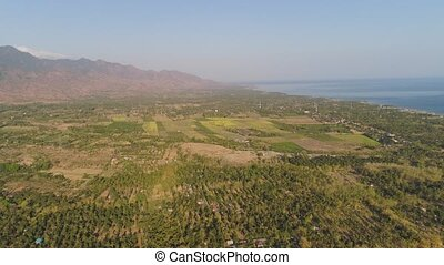 agricultural land in indonesia - aerial view agricultural...