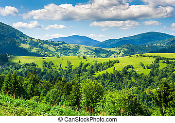agricultural land in the mountains - agricultural land in...