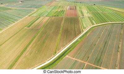Agricultural land with green crops from above - Agricultural...
