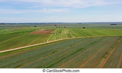 Agricultural land with green crops from above - Farmlands...