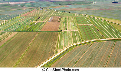 Agricultural land with green crops from above