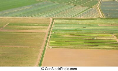 Agricultural land with green crops from above - Green fields...