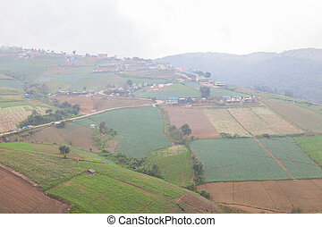 Agricultural lands in the mountains