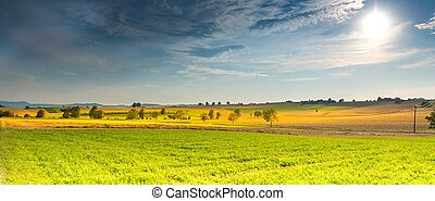 Agricultural Lands with sun shining in the day