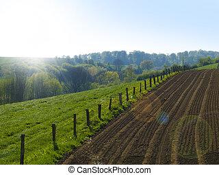 agricultural landscape - agricultural countryside landscape...
