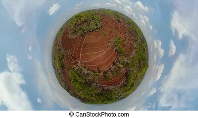 Agricultural landscape in indonesia. - little planet view...