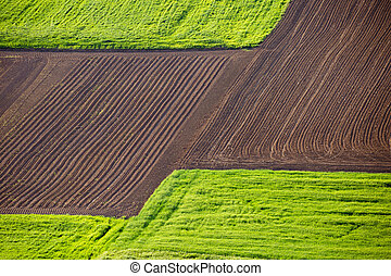 Agricultural landscape layers field and meadow view
