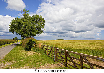 agricultural landscape with new fence
