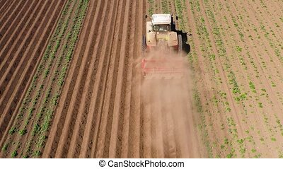 Agricultural machinery in the potato field cultivates the...