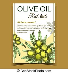 Agricultural Olive Tree Branch on Poster Vector