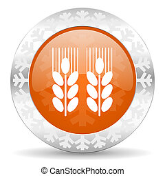 agricultural orange icon, christmas button