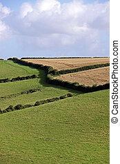 Agricultural rural farmland