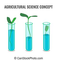 Agricultural science concept showing sprout in glass tube
