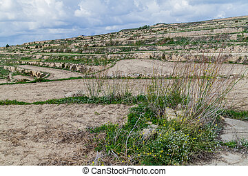 Agricultural terraces on the island of Gozo, Mal