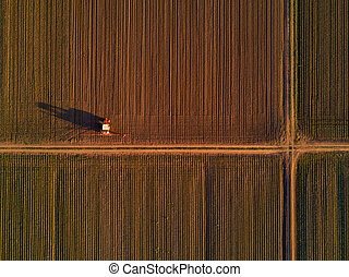 Agricultural tractor with crop sprayer in cultivated corn crop field
