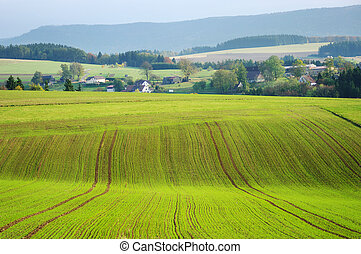 Agricultural view on fields and village