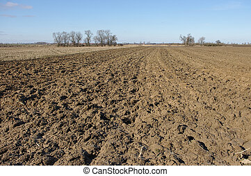 Agricultural view on plowed field