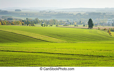 Agricultural view on the fields