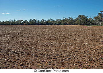a rural paddock cultivated for grain sowing