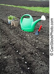 Agriculture - An image of green plants and watering can