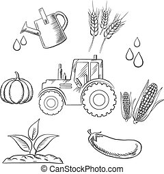 Agriculture and farm sketched objects with tractor water,...
