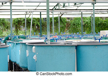 Agriculture aquaculture water system farm - Agriculture...