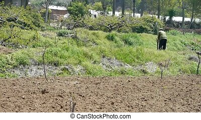 agriculture, arable, land., paysan
