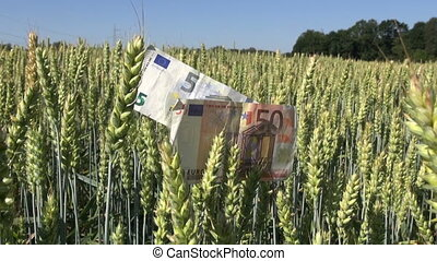 agriculture business concept euro banknotes and coins with...